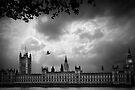 Westminster by Svetlana Sewell