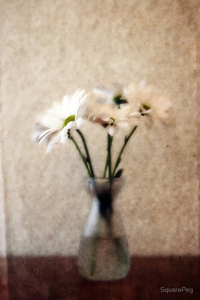 Small Vase of Daisies by SquarePeg