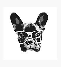 nerd dog Photographic Print