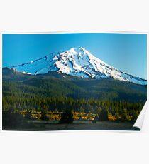 Mt. Shasta At Dawn Poster
