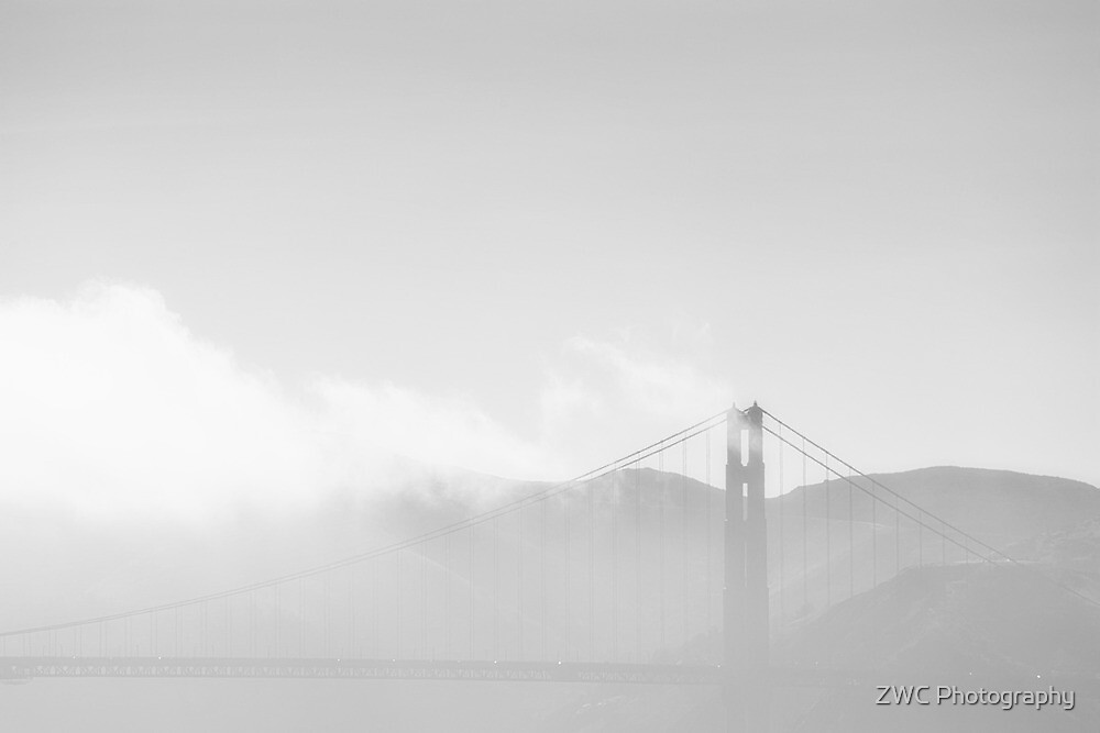 In the mist by ZWC Photography