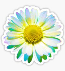 Trippy Daisy Sticker