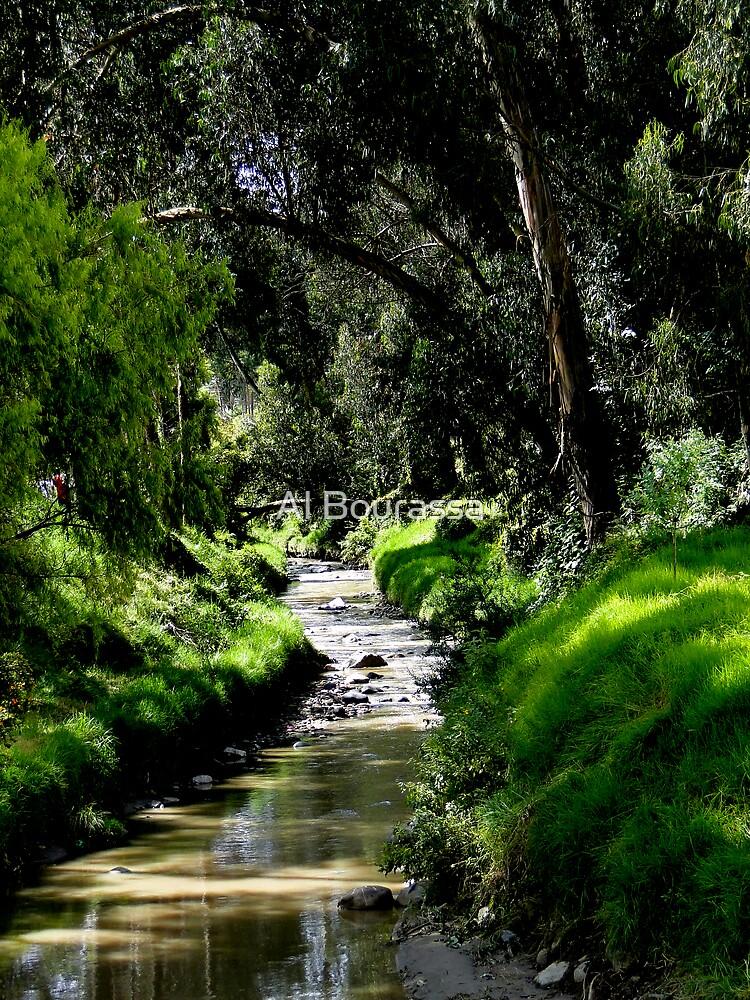 Babbling Brook by Al Bourassa