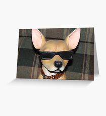 The COOL Dude....... Greeting Card