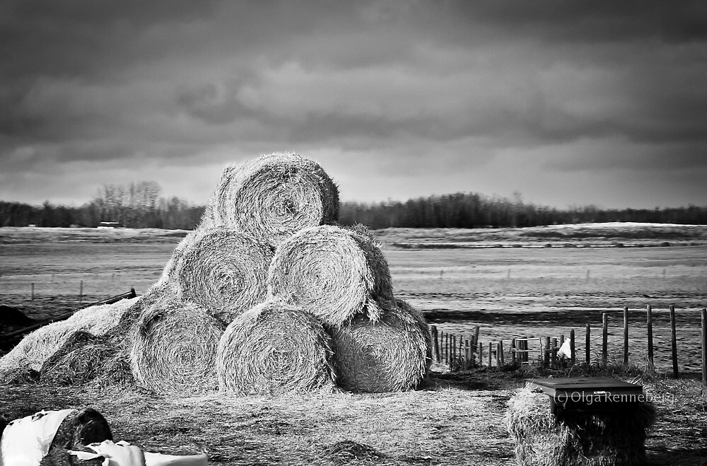 Country side by Orenn