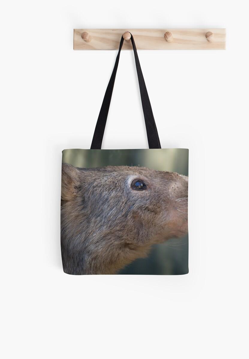 Wombat by knelliec