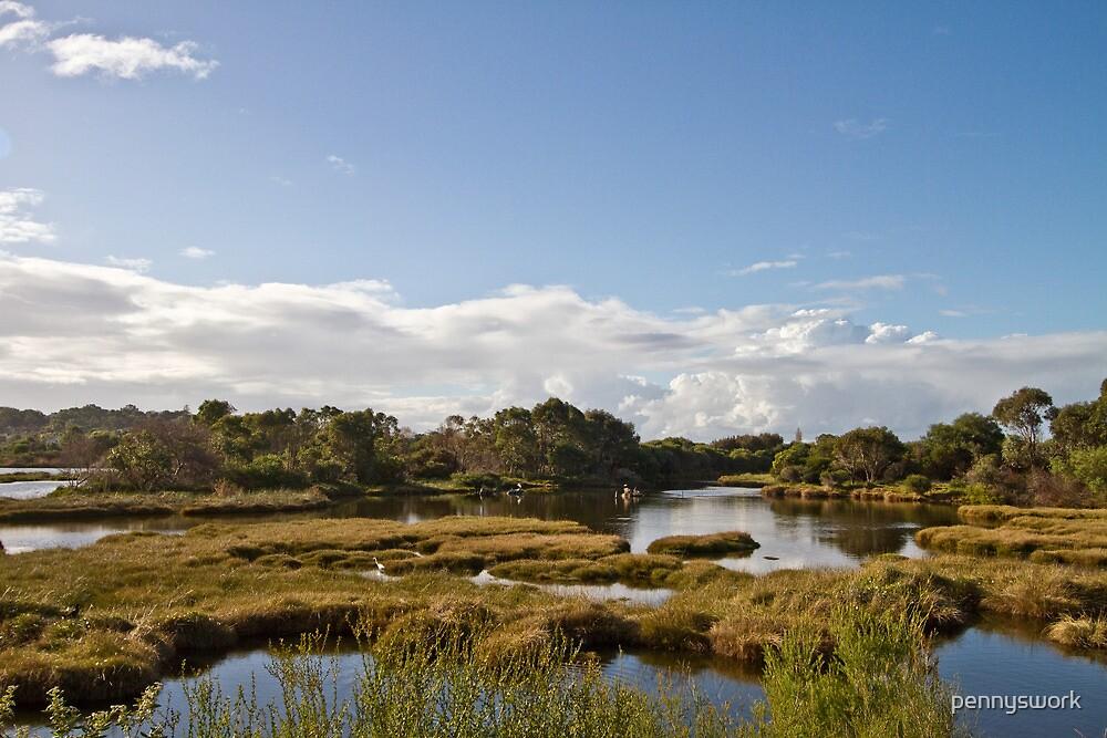 Big Swamp - Bunbury by pennyswork