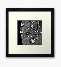 Macro water droplets study III Framed Print