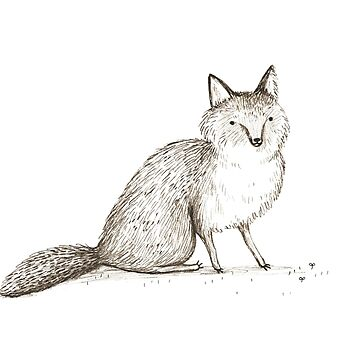 Swift Fox Sketch von SophieCorrigan