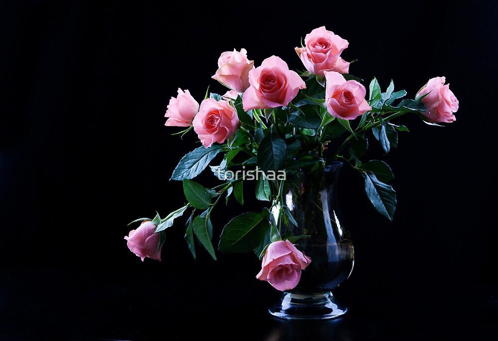 Close up of beautiful pink roses by torishaa