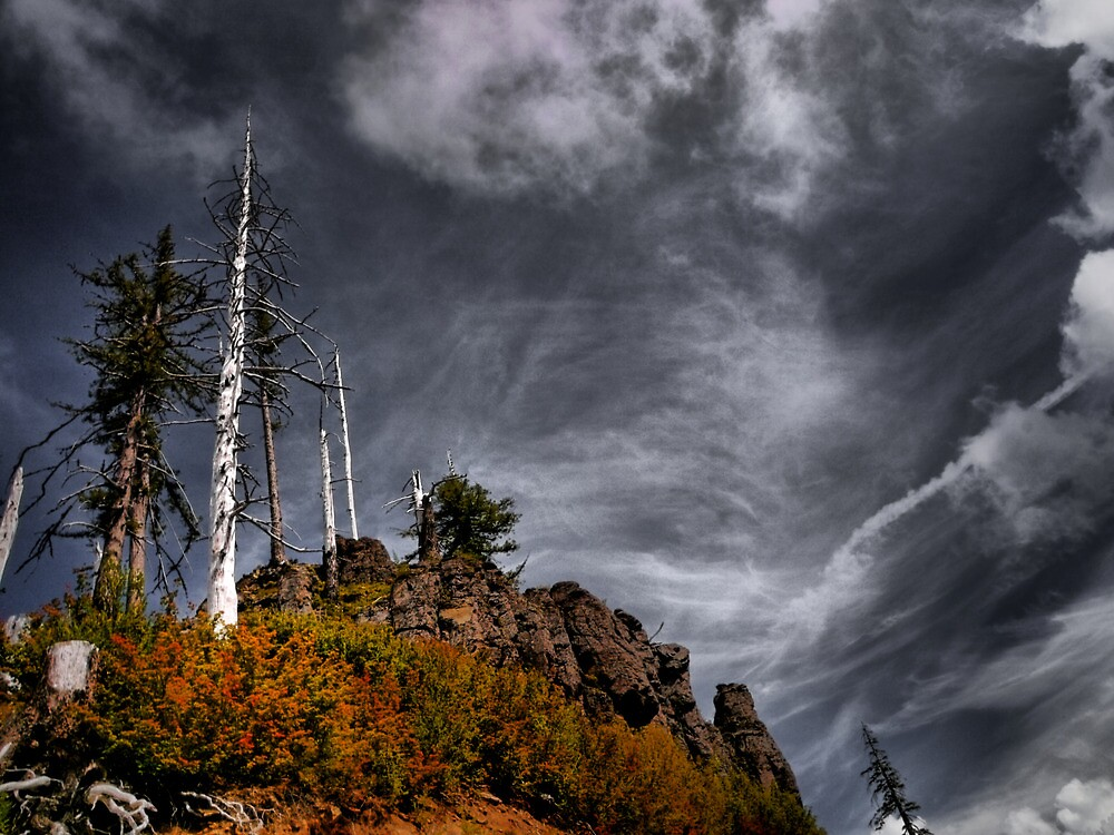 The High Places by Charles & Patricia   Harkins ~ Picture Oregon