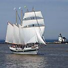 Tall Ship In Cleveland Harbor by Jack Ryan