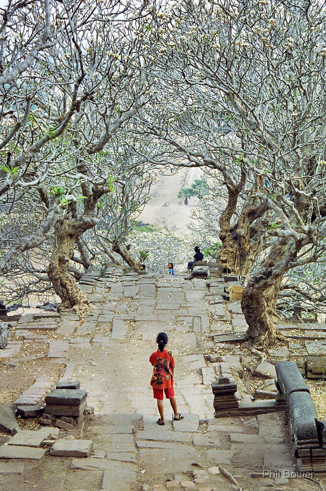 Girl amoungst the trees in Wat Phu, Laos. by Phil Bower