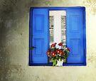 Kalymnos Window by Carol Bleasdale