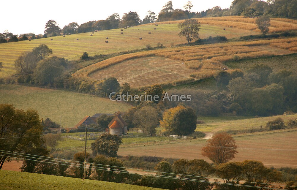 Country chapel and fields near Amberley, UK by Catherine Ames
