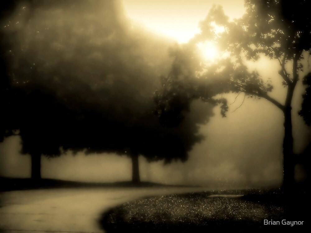 The Serpentine Path by Brian Gaynor