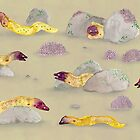 White-eyed Moray Eels by Sophie Corrigan