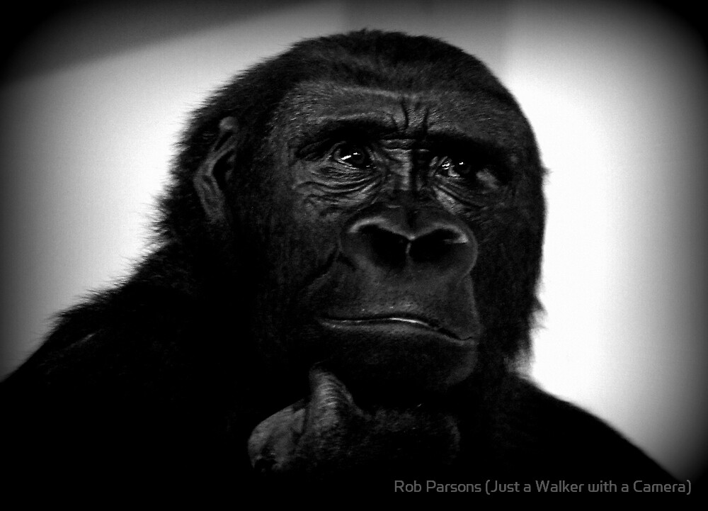 The Thinker by Rob Parsons (AKA Just a Walker with a Camera)