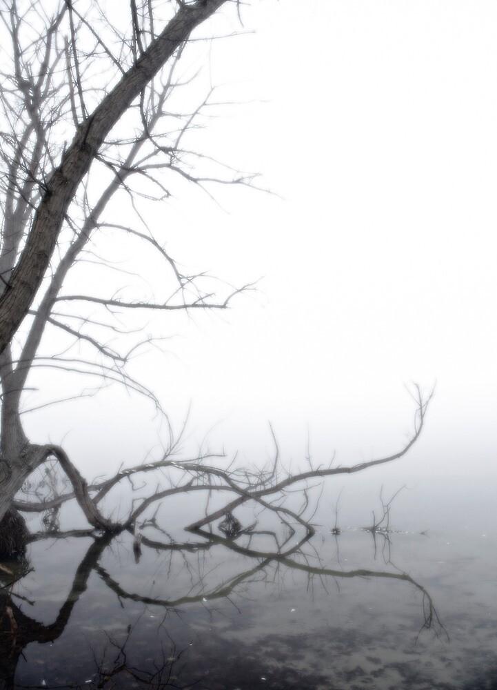 Fog #1 by Brian Matus