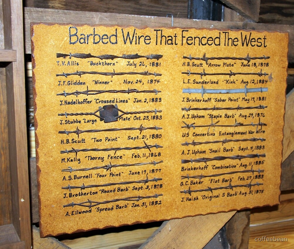 Barbed Wire by coffeebean