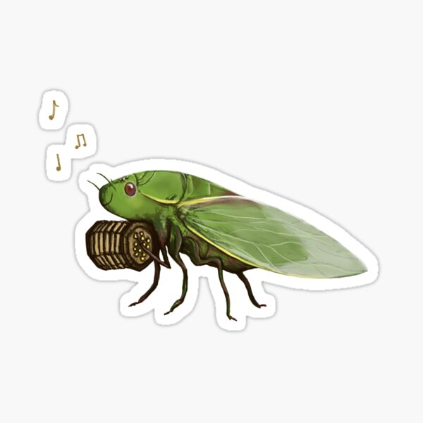 Cicada Playing a Squeezebox Sticker