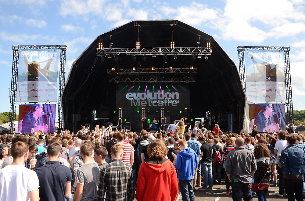 Evolution stage  by Metcalfe