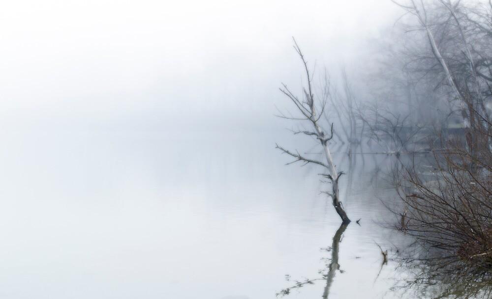 Fog #2 by Brian Matus