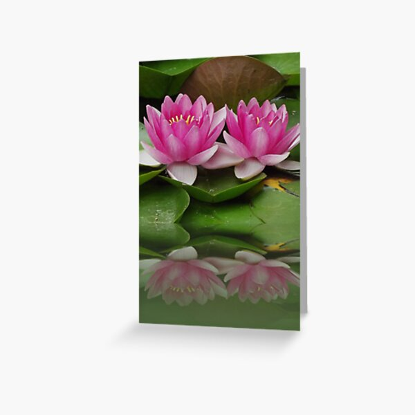 Beauty Reflected Greeting Card