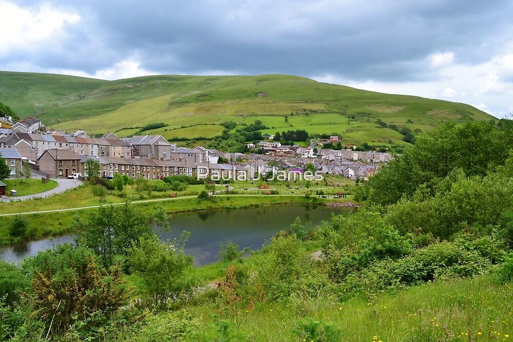 View of Blaengarw from Parc Calon Lan, Garw Valley  by Paula J James