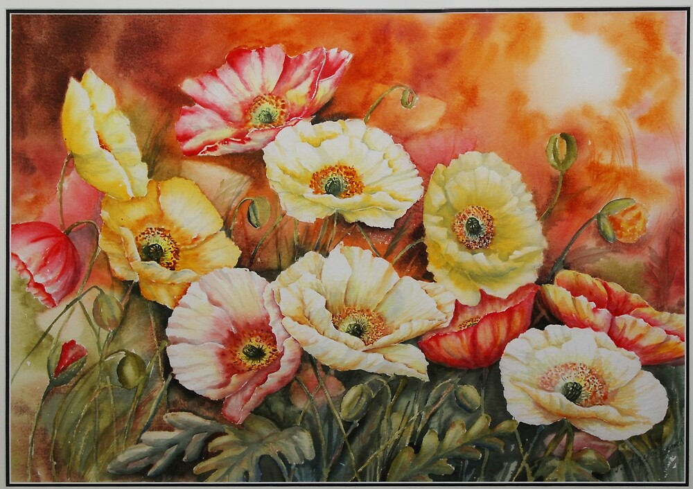 Poppies for you by patty123