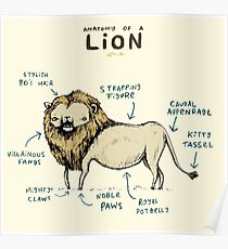 Anatomy of a Lion Poster