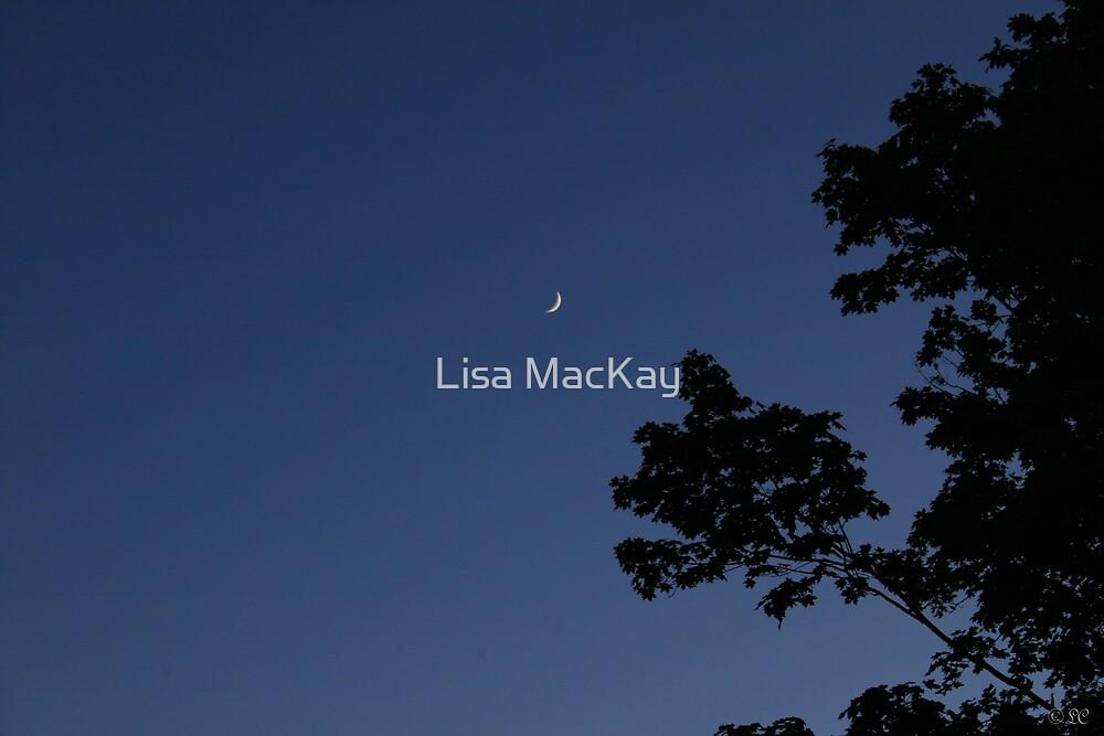 Fingernail Moon by Lisa MacKay
