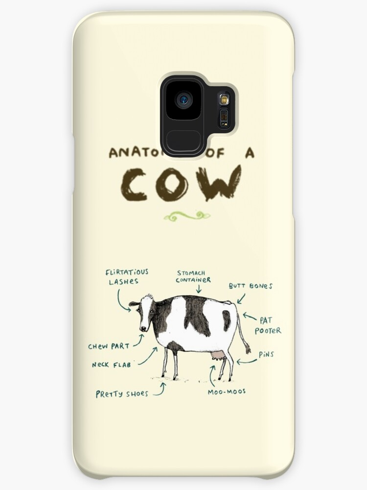 Anatomy of a Cow\
