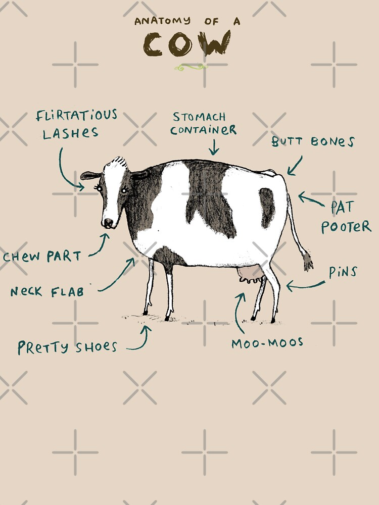 Anatomy Of A Cow T Shirt By Sophiecorrigan Redbubble