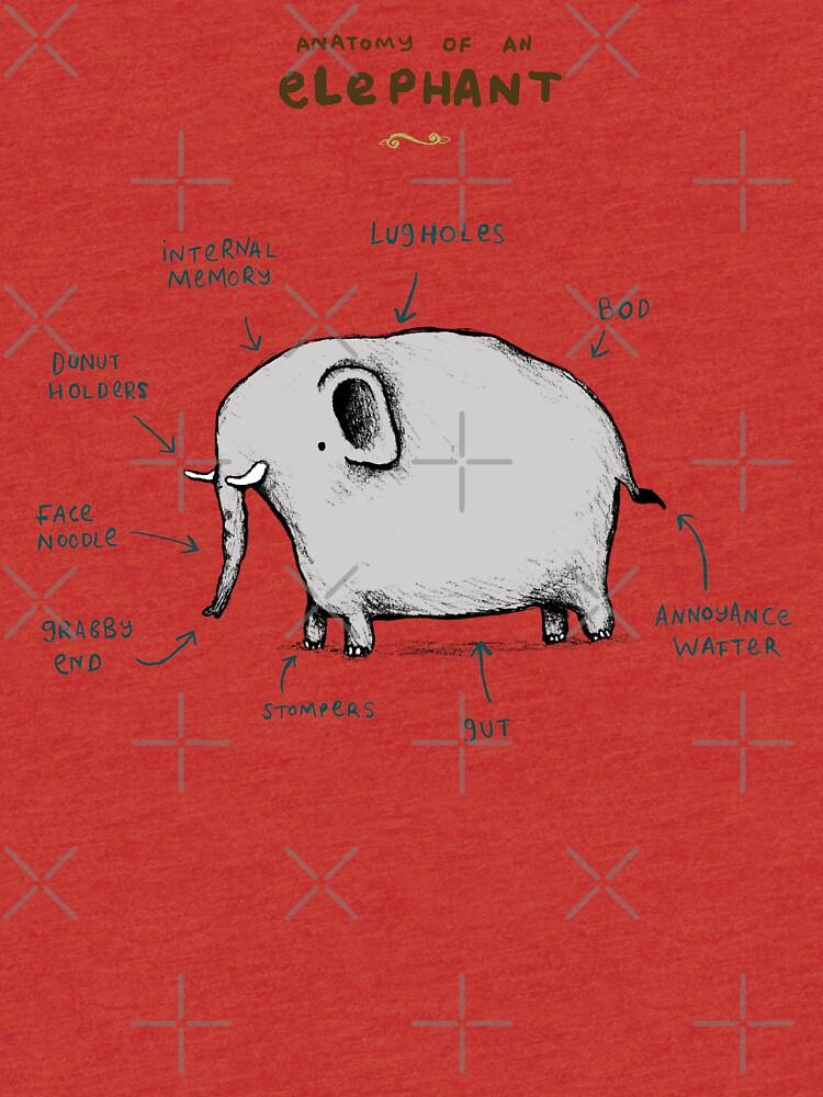 Anatomie eines Elefanten von SophieCorrigan