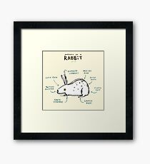 Anatomy of a Rabbit Framed Print