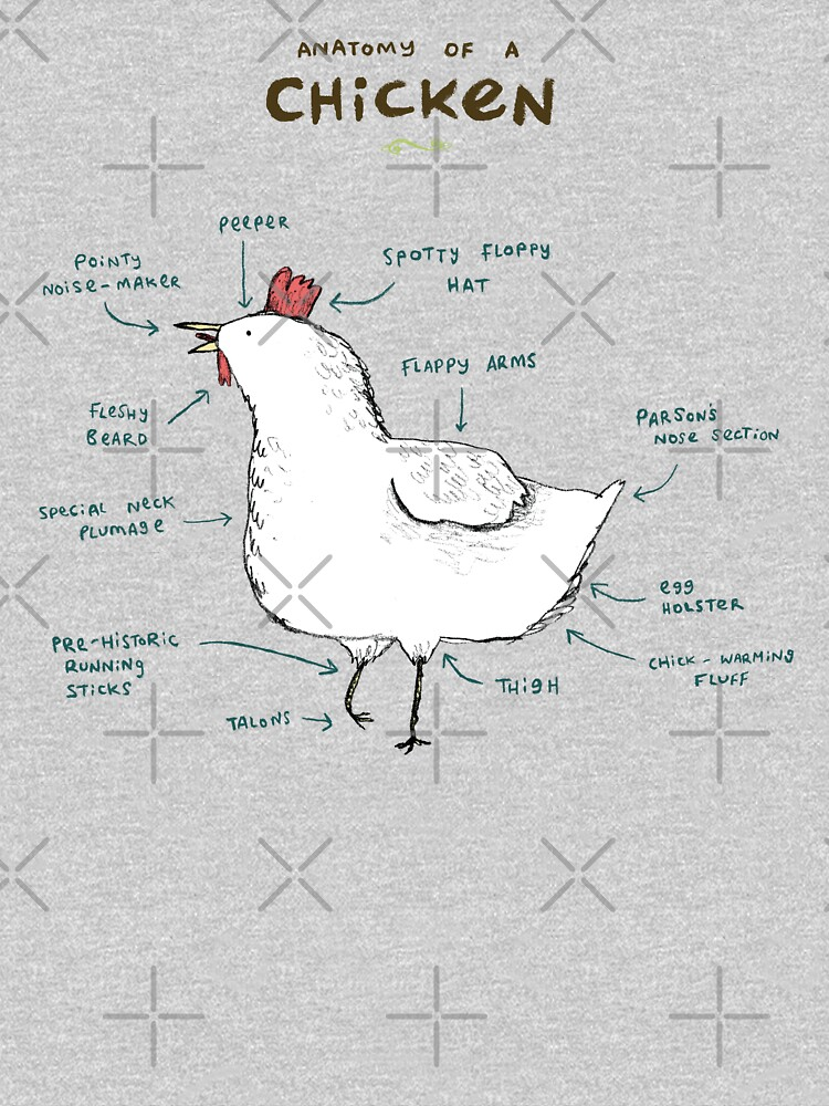 Anatomy of a Chicken by SophieCorrigan