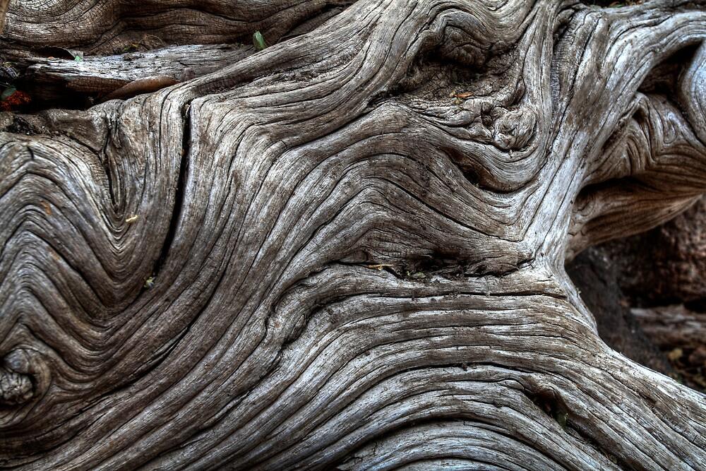 Wood Freak 2 by Bob Larson