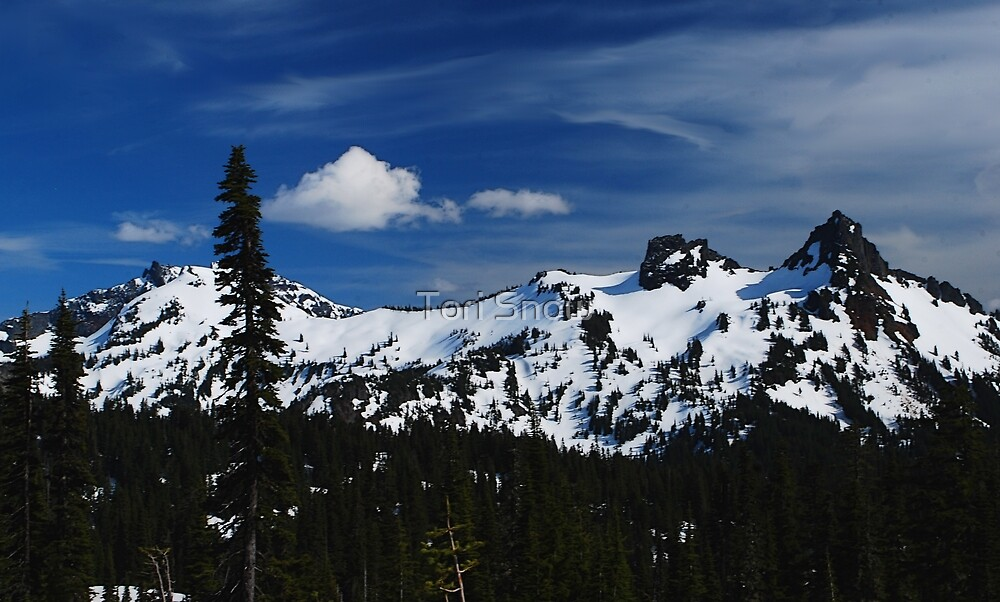 The Beautiful Tatoosh Range by Tori Snow