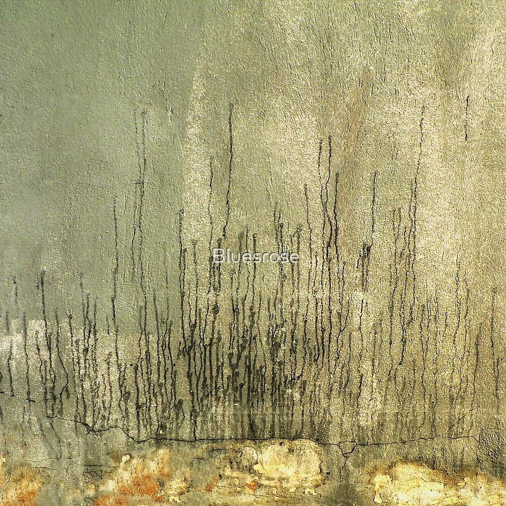 Wall. VII by Bluesrose