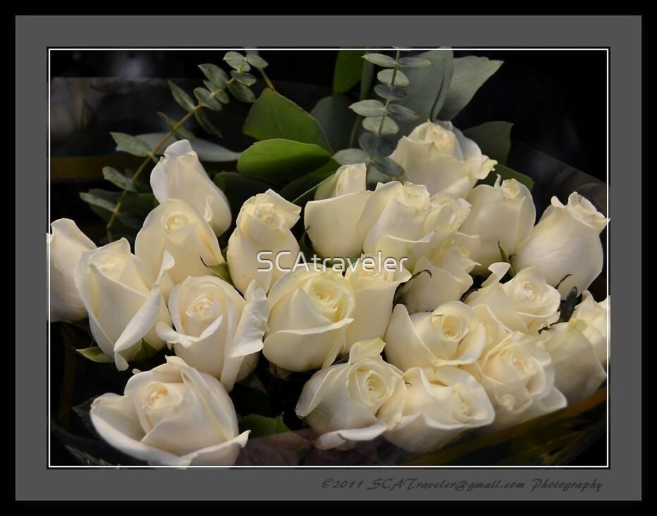 White Roses by SCAtraveler