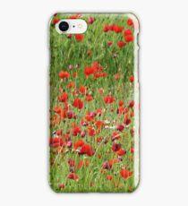 Field if wild poppies iPhone Case/Skin
