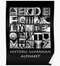 Savannah Alphabet - Black and White Poster