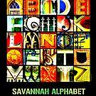 Savannah Alphabet - Bright by Ellen  Hagan