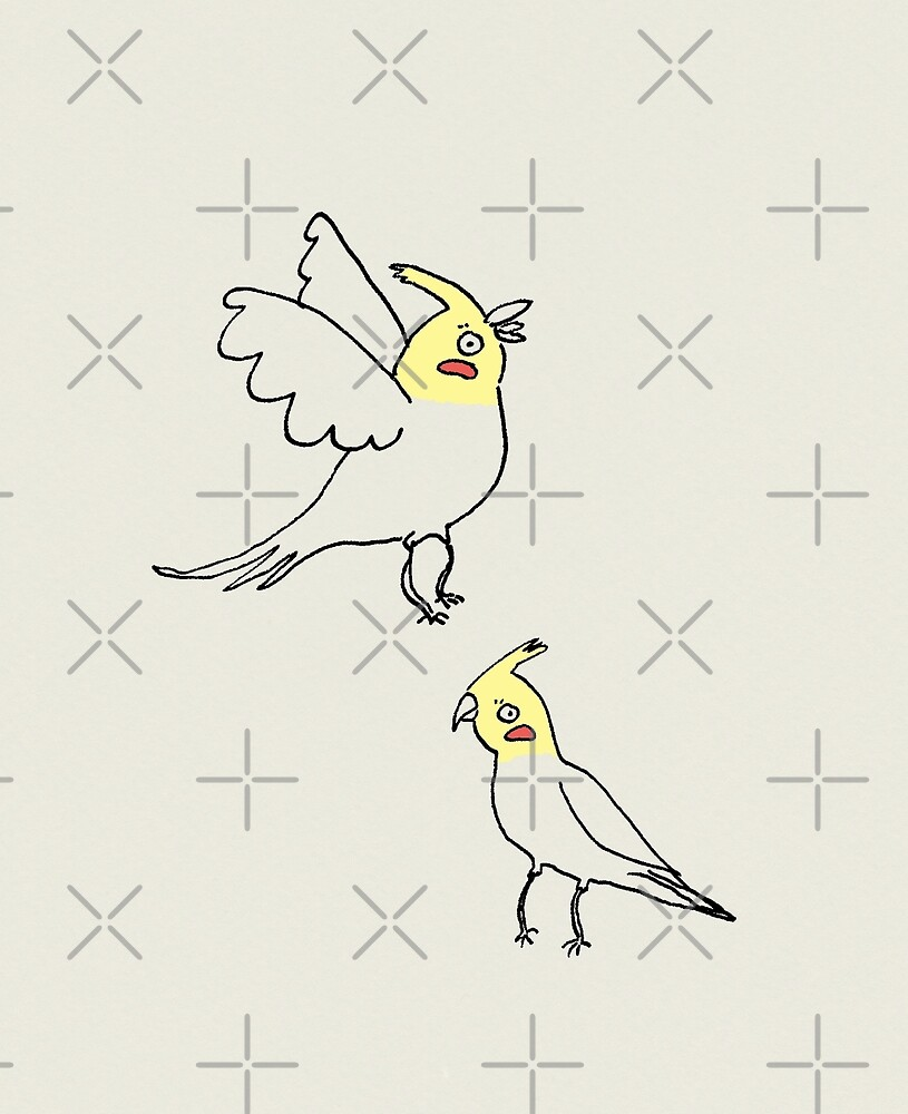 Cockatiels by Sophie Corrigan