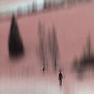 Winter Walk (red), Fischbacher Alps, Austria by KUJO-Photo