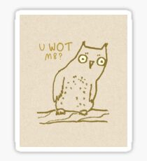 Confused Owl Sticker