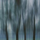 Four Trees, Budapest (blue & green) by KUJO-Photo