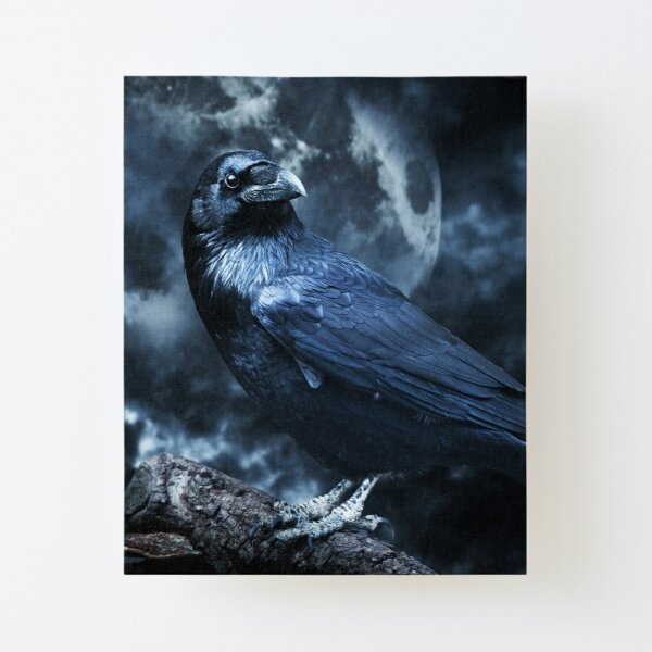 "Odins Raven Basking in Moonlight"" Mounted Print by NozzandtheBeast 