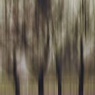Four Trees, Budapest (purple & brown) by KUJO-Photo